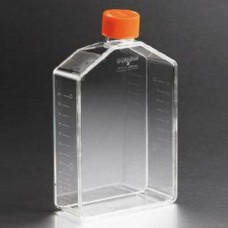 Corning #431080 175cm² Rectangular Canted Neck Cell Culture Flask with Vent Cap, 5/pack, 50 flasks/case